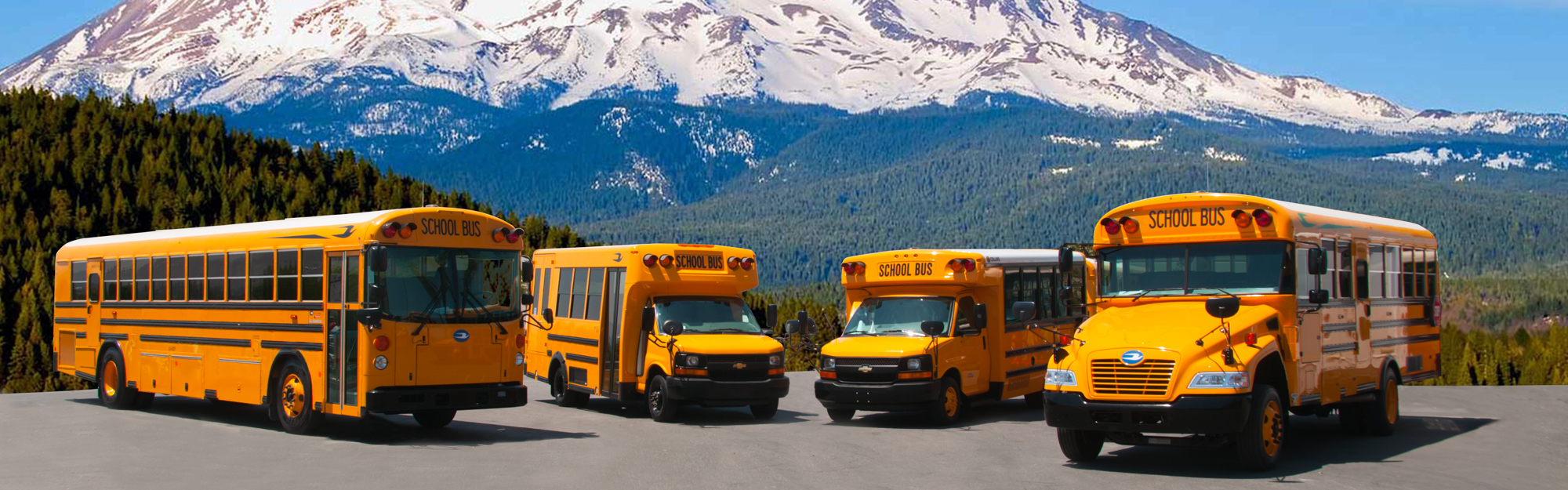 new-school-bus-header