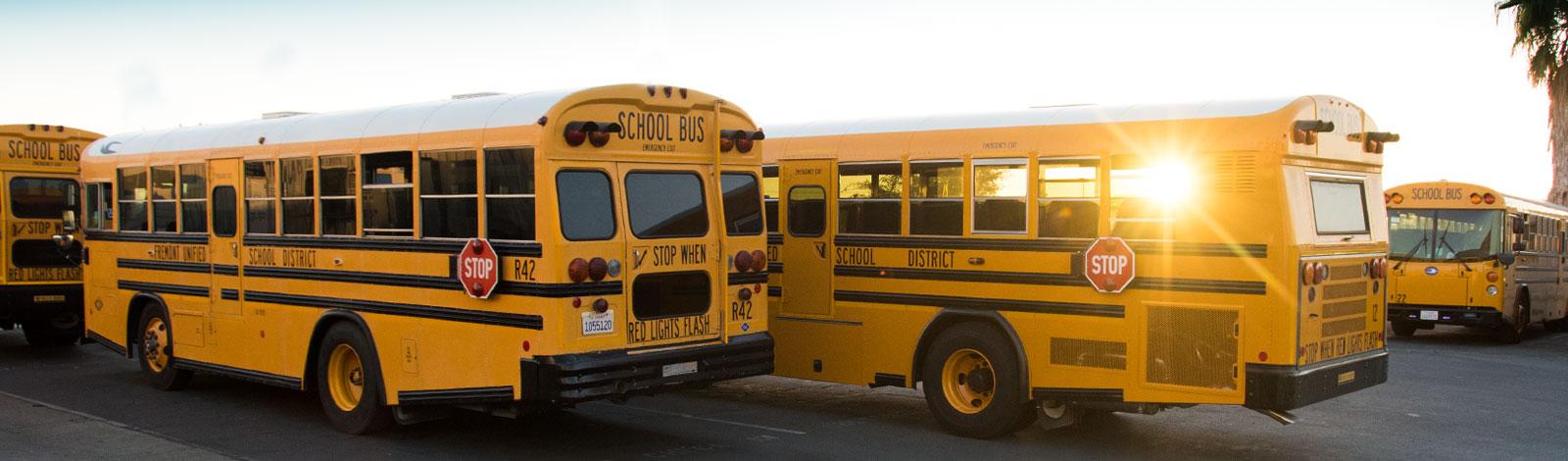 newschool-bus-type-d-image-header