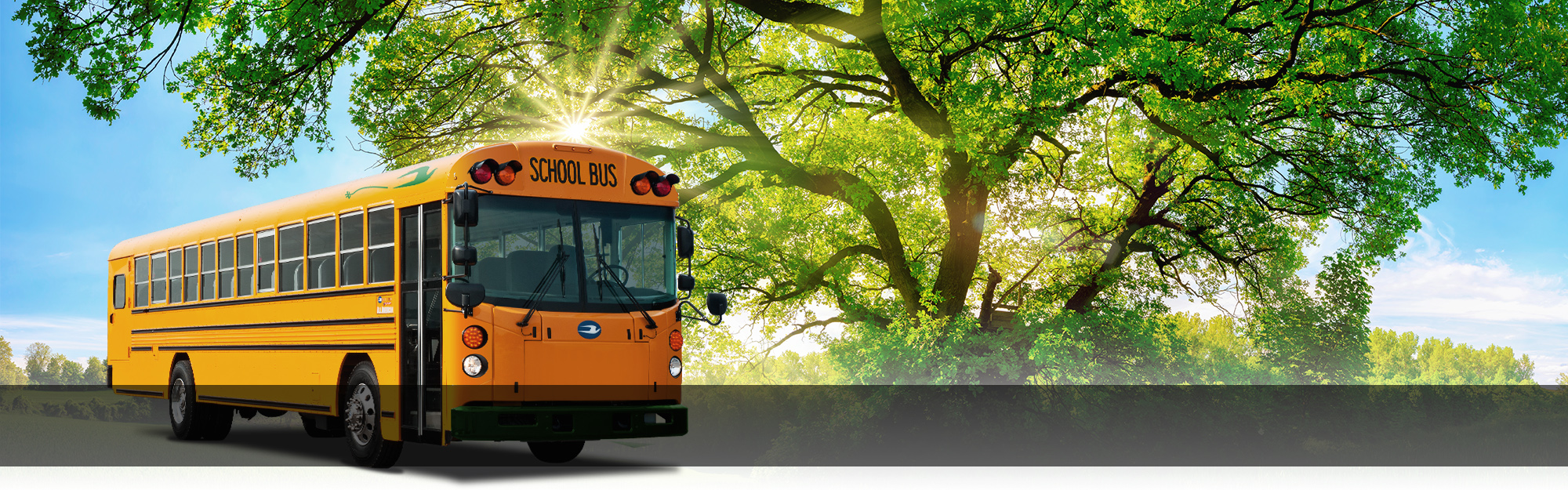 A-Z-Bus-Web-header-Electric School Bus